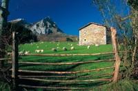Las casas rurales, al 60% de ocupación esta Semana Santa